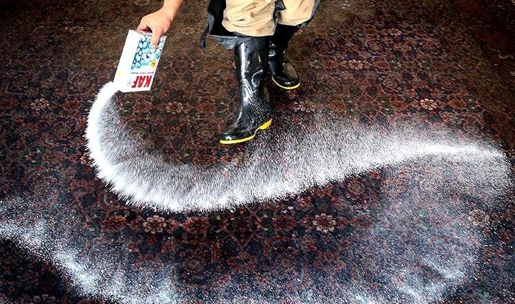 قالیشویی نگین