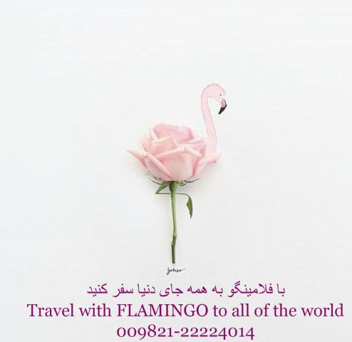 هلدینگ گردشگری فلامینگو