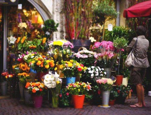 گل فروشی وندا